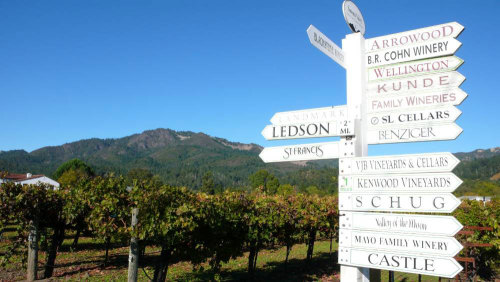 Wine Country Tour by San Francisco Sightseeing