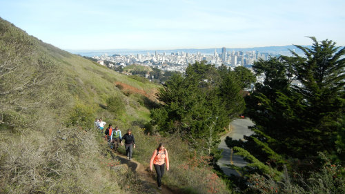 City Heights & Jungles Hiking Tour by Urban Hiker San Francisco