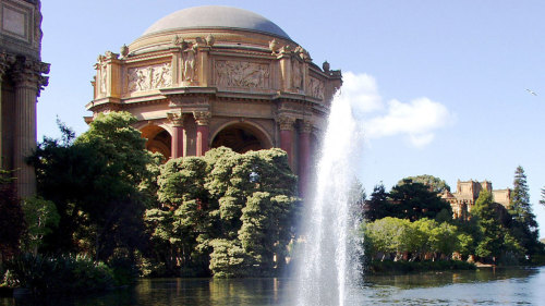 Combo Bus Package: City Sightseeing & Muir Woods Excursion by Tower Tours