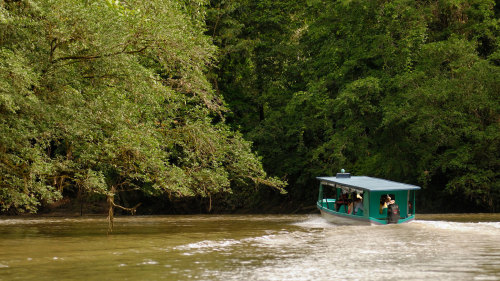 Horseback Riding & Rainforest Boat Tour