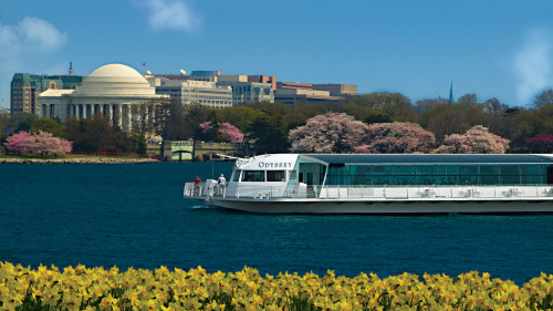 Elegant Brunch Cruise aboard the Odyssey of Washington, DC
