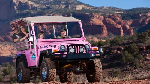 Pink Jeep Tours: Ancient Ruins & Diamondback Gulch Tour