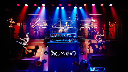 Drum Cat Performance with Transfer by Seoul City Tour