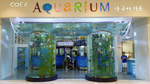 COEX Aquarium, Bongeunsa Temple & Han River Cruise by Seoul City Tour