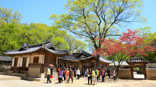 Changdeokgung Palace, Secret Garden & National Museum Tour by Kim