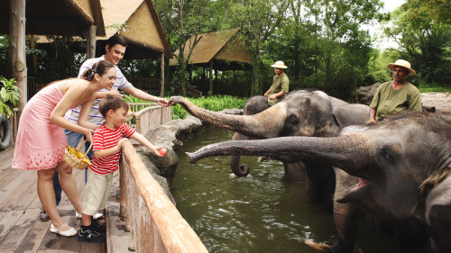 Singapore Zoo Admission with Transfer
