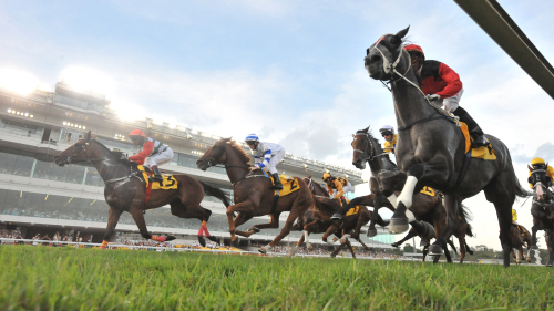 Singapore Turf Club: Horseracing with Owners