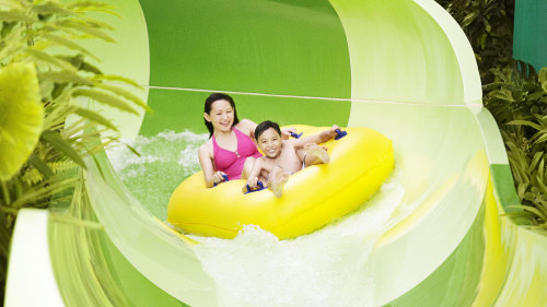 Adventure Cove Waterpark™ 1-Day Pass with Transfer by Tour East Singapore