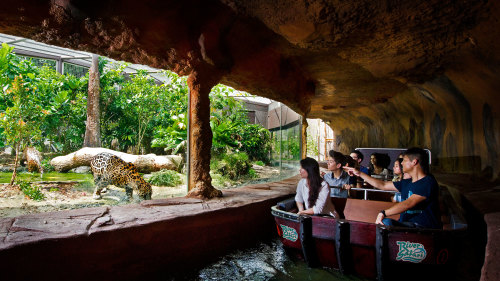 River Safari Admission with Transfer