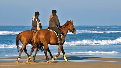 Horse Riding Experience on the Beaches of Sintra with a Local