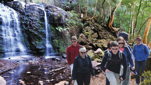 Blue Mountains & Valley of the Waters Half-Day Hiking Tour