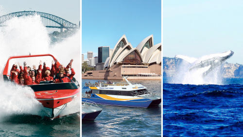 Sydney Attractions Pass & Whale-Watching Cruise