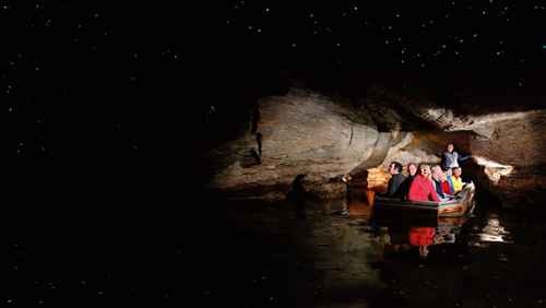 Te Anau Glowworm Caves Tour by Real Journeys