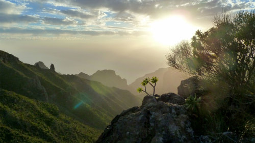 Tenerife At Your Feet Full-Day Excursion