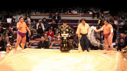 Private Day in the Life of a Sumo Wrestler Tour