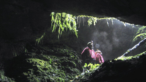 Glowworm Cave Tour by Underworld Adventures
