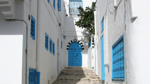 Tunis, Carthage & Sidi Bou Said Full-Day Tour with Lunch
