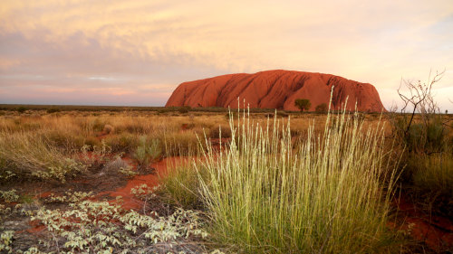 3-Day Kings Canyon & Uluru Explorer Tour by AAT Kings
