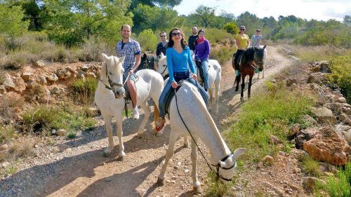 Horseback Riding & Local Museums by Trip4Real