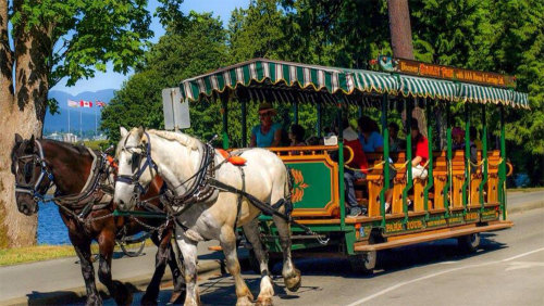 Horse-Drawn Carriage Tour of Stanley Park
