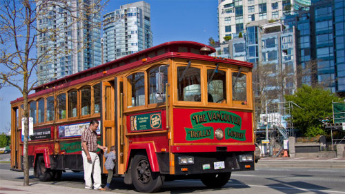 City Trolley Tour & Observation Deck