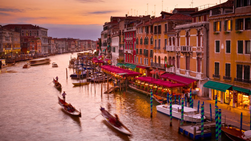 Venice in 1 Day Highlights Tour