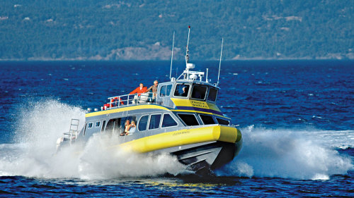 Victoria Whale-Watching, Butchart Gardens & Cruise