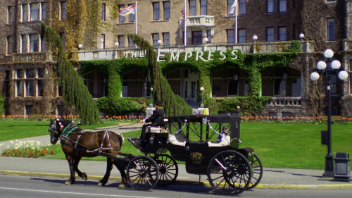 Comprehensive Horse-Drawn Carriage Tour