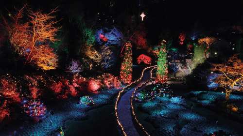 Butchart Gardens Holiday Lights Tour