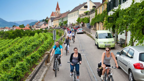 Small-Group Winetasting Bike Tour in the Wachau Valley