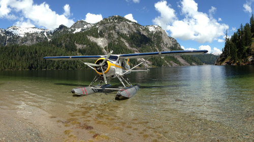 Alpine Lake Picnic & Tour by Floatplane