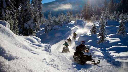 Cruiser Snowmobile Adventure