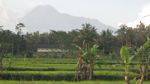 Mount Merapi Private Bicycle Tour & Prambanan Visit