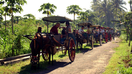 Private Candirejo Village Life Full-Day Tour