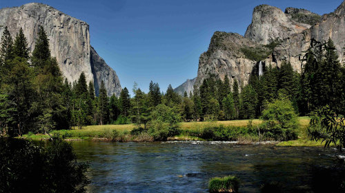 Yosemite in a Day by Gray Line San Francisco