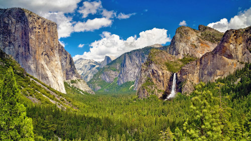 Small-Group Natural Wonders of Yosemite Tour by EverGreen Escapes