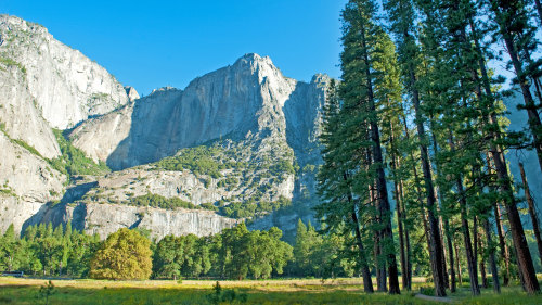 Private Natural Wonders of Yosemite Tour by EverGreen Escapes