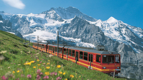 Jungfraujoch: Top of Europe Day Trip by Gray Line Zurich