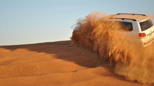 Liwa Oasis Full-Day Safari with Lunch by Gray Line