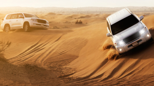 City Tour & 4x4 Desert Safari with BBQ Dinner Combo by Gray Line