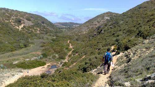 Small-Group Wonders of the Southwest Coast Hiking Tour with Picnic Lunch