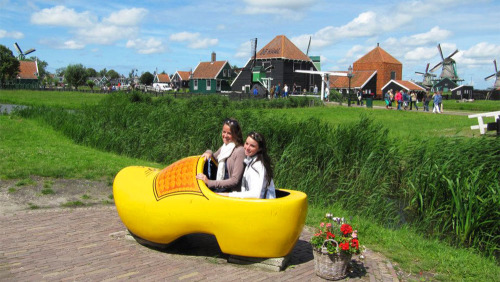 Dutch Countryside & Cheese Farm Bike Tour