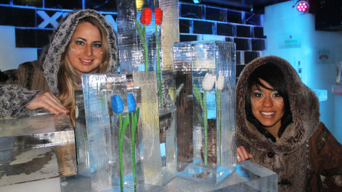 Xtracold Icebar Amsterdam Admission with Drinks