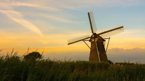 Dutch Windmills & Edam Tour with Lunch & Cheese Tasting