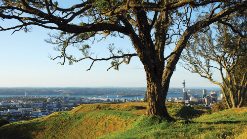 Mount Eden Walking Tour