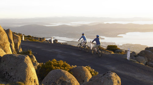 Mount Wellington Bicycle Descent by Under Down Under Tours