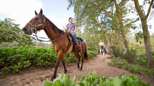 3-Day Horse Ride & Rafting Trip by River Valley