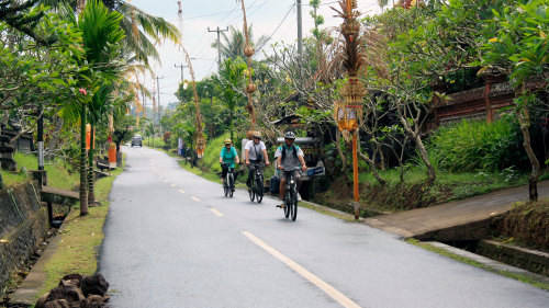 Cycling Tour with Cooking Class & Balinese Buffet Lunch by Tour East