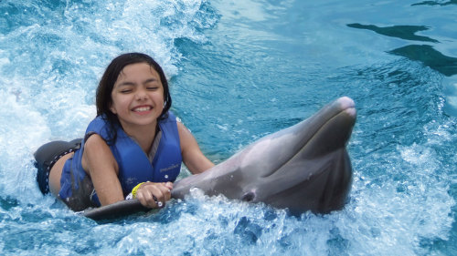 Dolphin Interaction Program