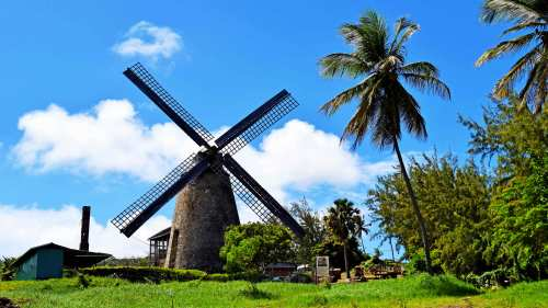 Discover Barbados Past & Present Tour